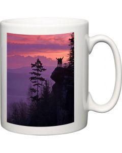 Two Sided Photo Upload Mug